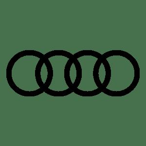 Пневмобаллоны Audi
